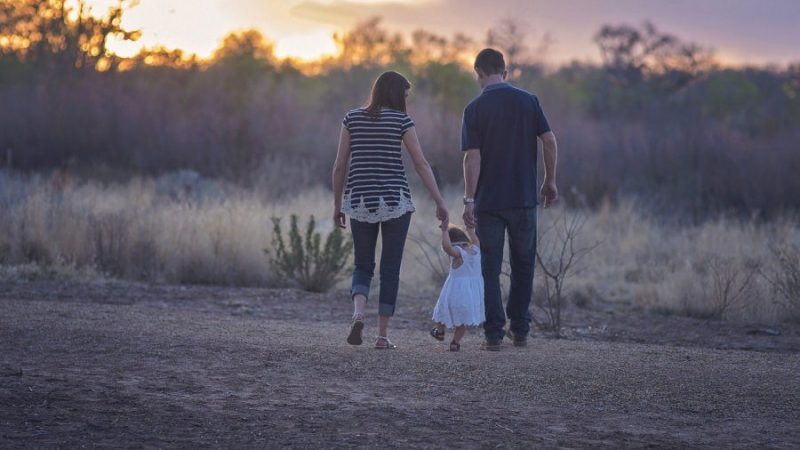 Le concept shandarien de parentalité