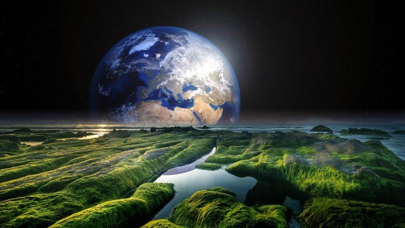 Les lois écologiques shandariennes